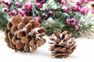 christmas pinecone